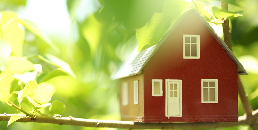 Going Green? Follow This Guide to Find an Energy Efficient Home