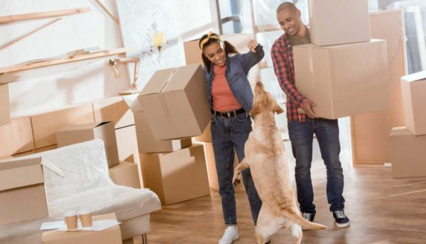couple holding moving boxes with their dog