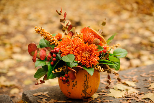 fall-flowers-31714800