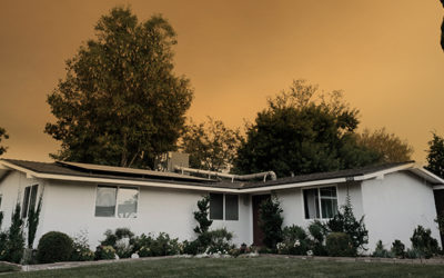 What's Next: Recovering From the California Wildfires
