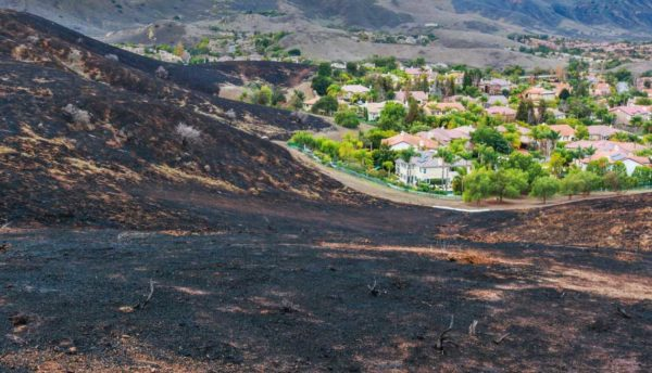 Wildfire effected area with houses in the distance