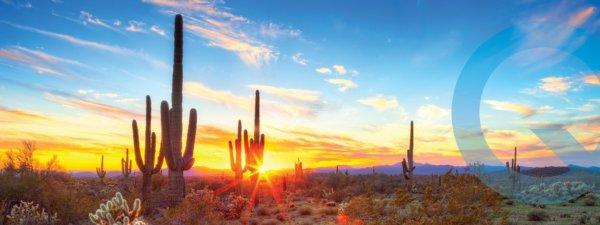 Phoenix-Housing-Market-Blog-Header